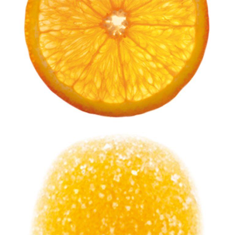 motta_pate_fruit_garde